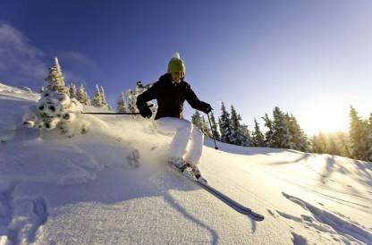 Skiurlaub Chalet an der Piste Austria Schladming